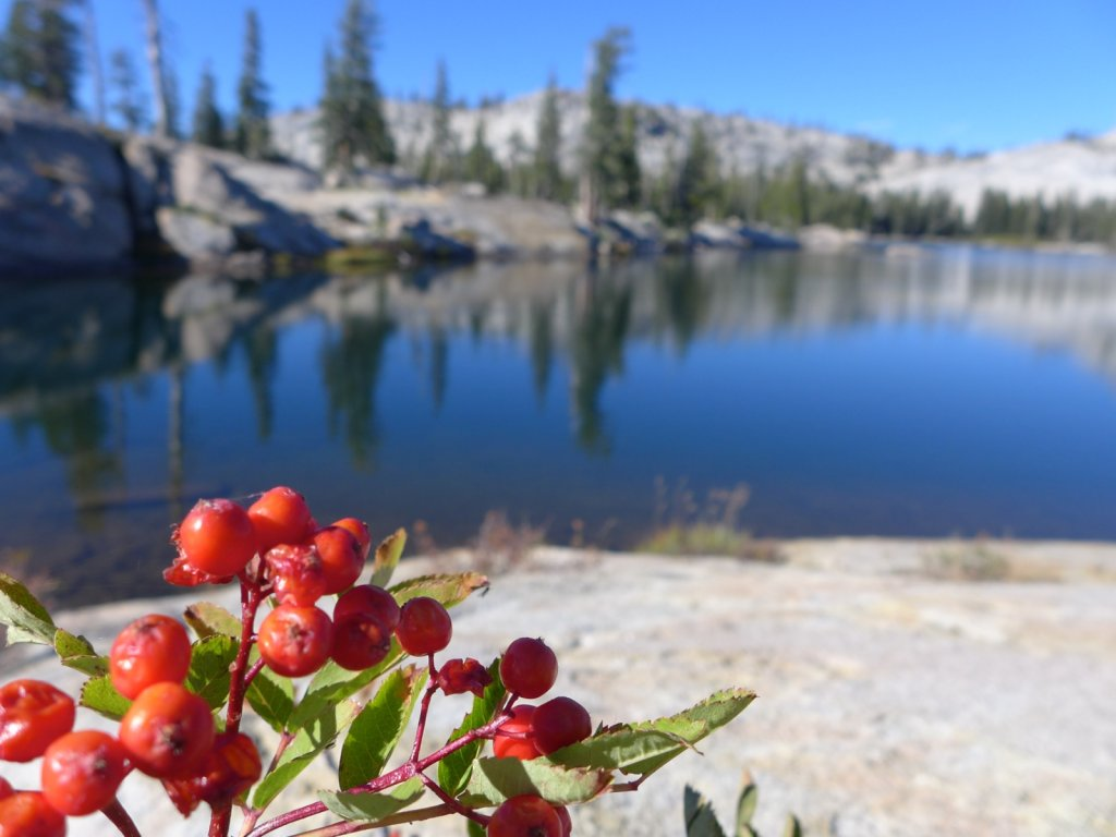 emigrant-wilderness-2013-020.jpg