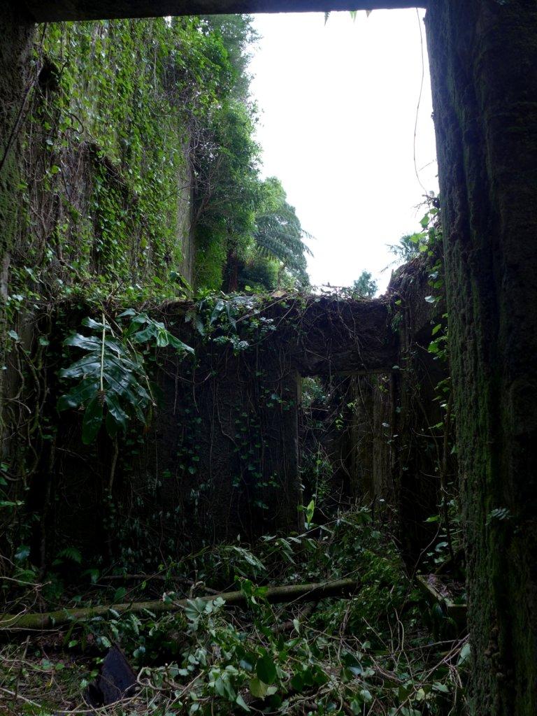 azores2013-povoacao-096.jpg