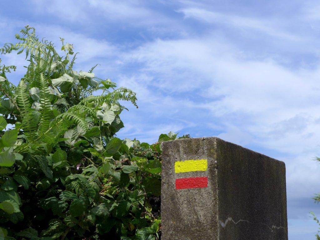 azores2013-ribeira-nordeste-059.jpg