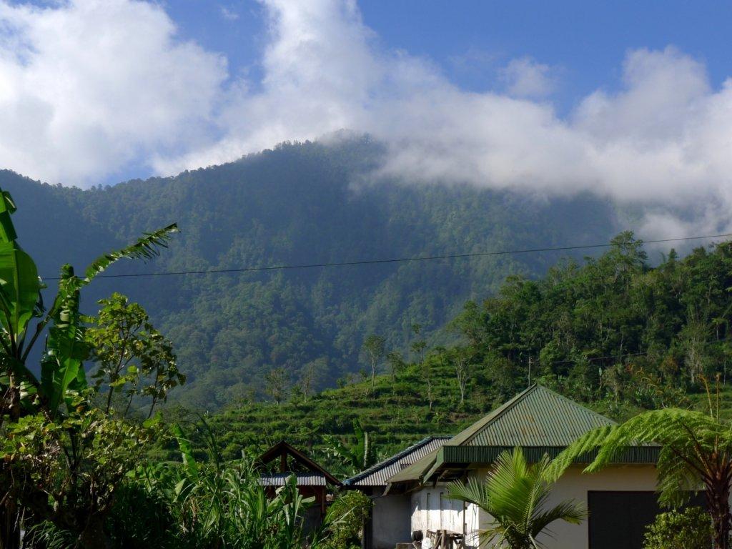 Bali Hai in Bedugul and Angseri