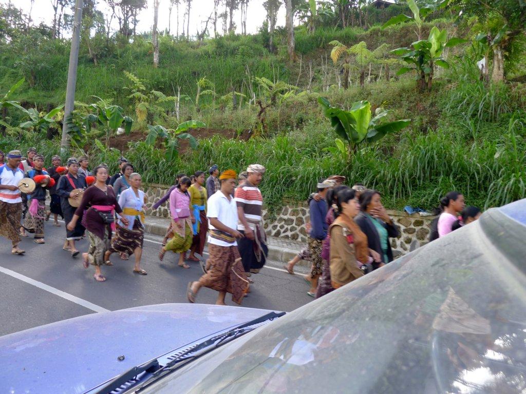 indo2012-bedugul-angseri-030.jpg