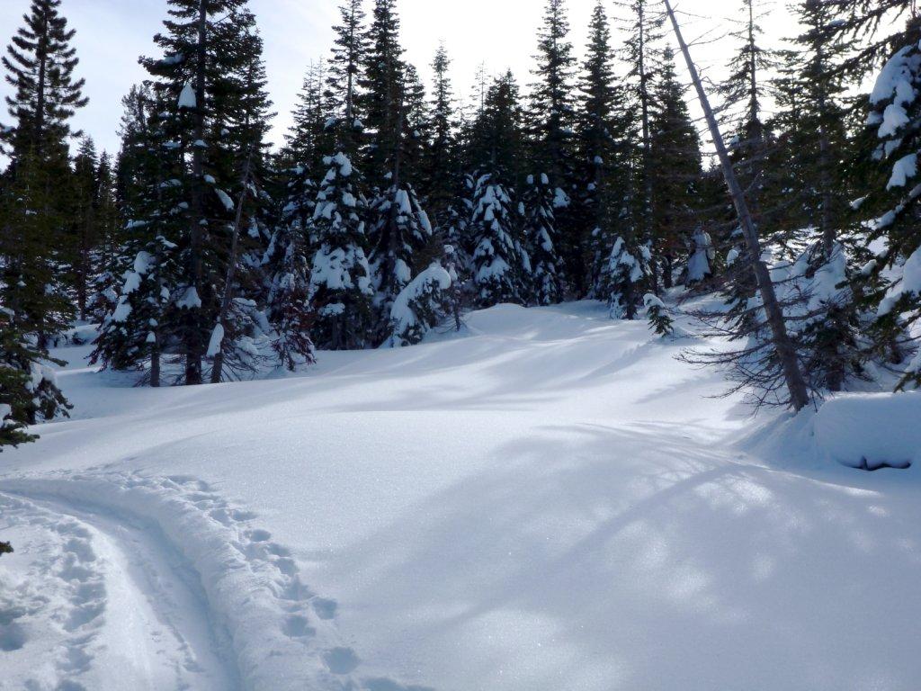 tahoe-2011-025.jpg
