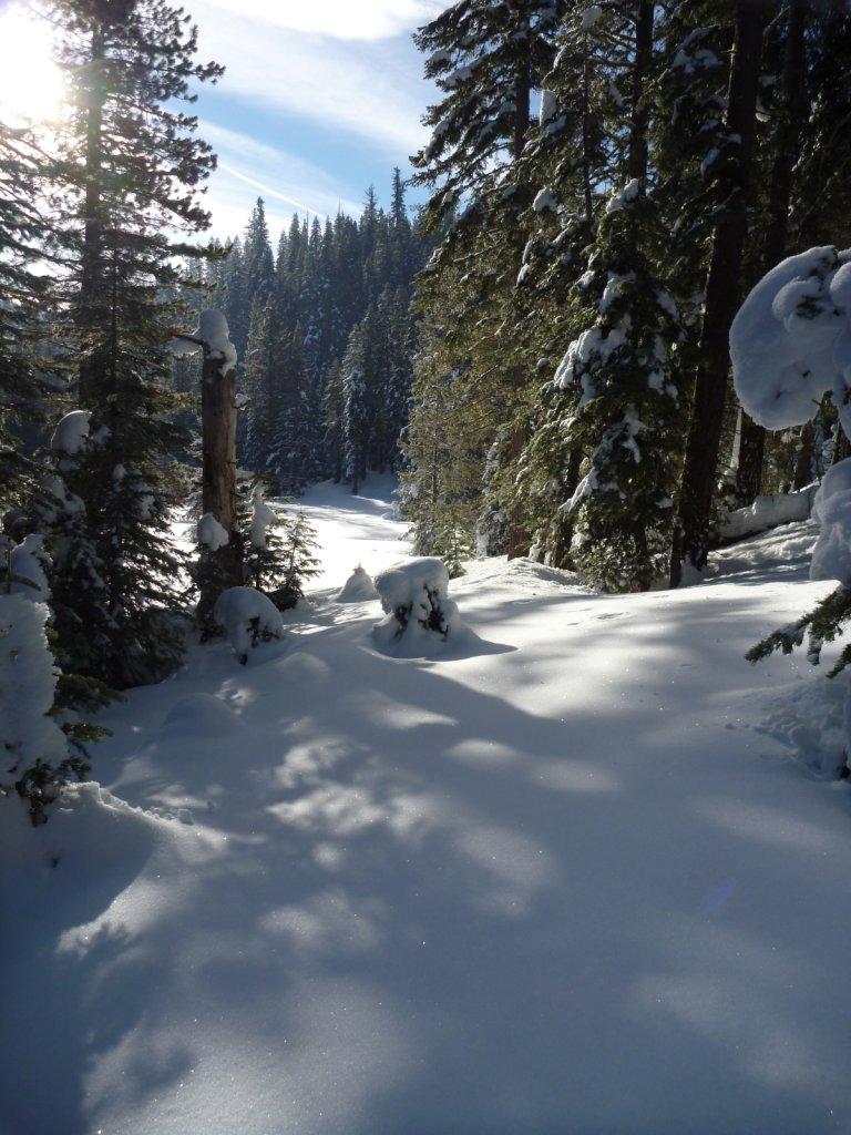tahoe-2011-023.jpg