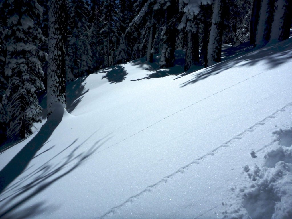 snow-months-2010-027.jpg