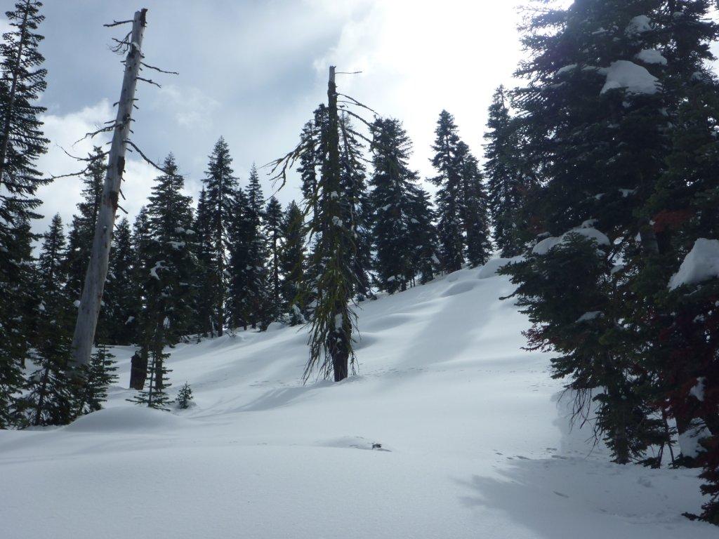 snow-months-2010-013.jpg