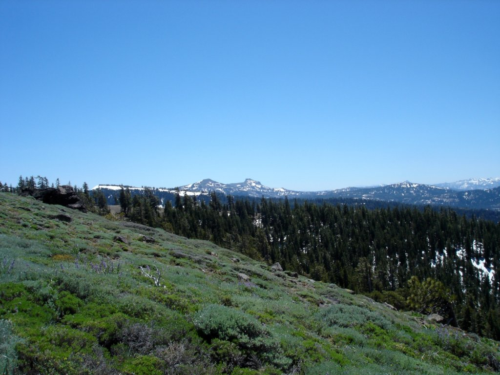 pct2005-sierra-city-to-echo-lake-027.jpg