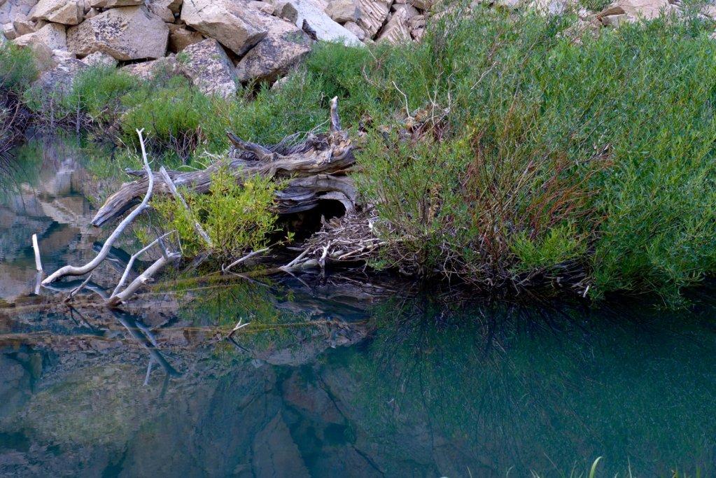 sierra-high-loop-tuolumne-twinlakes-093.jpg